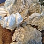 Beautiful cod skin looking like lava rock